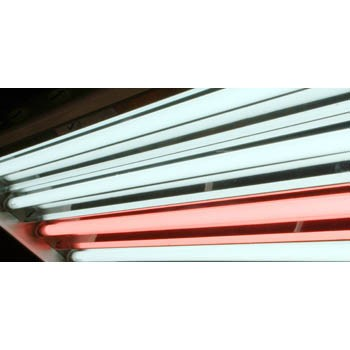 4 ft Pentron Red Fluorescent Tube