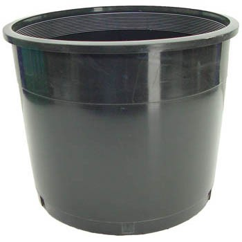 No.5 Short Plastic Pot