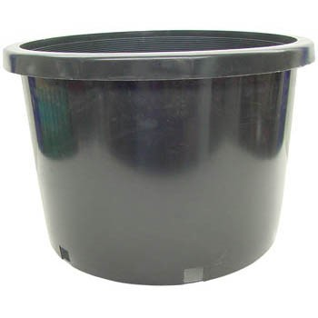 No. 10 Plastic Pot